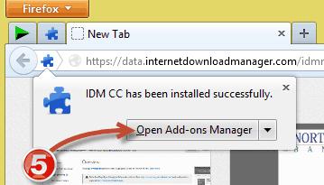 IDM Firefox Integration (4)