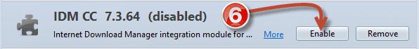 IDM Firefox Integration (5)